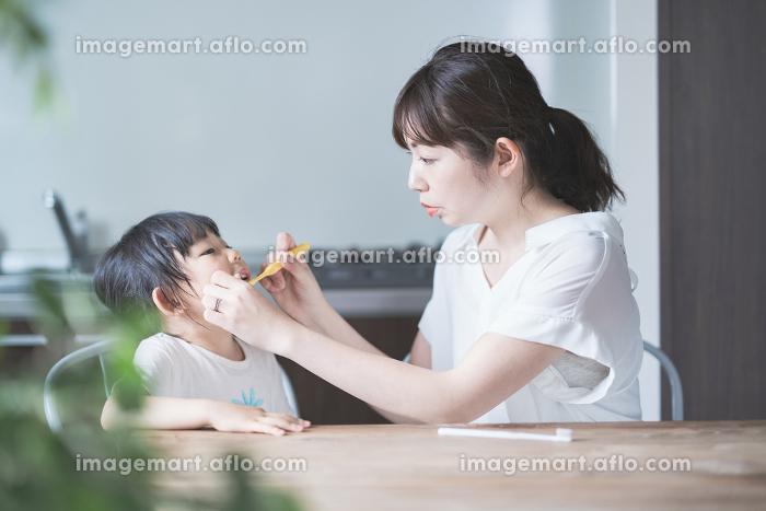 親子で歯磨きの販売画像