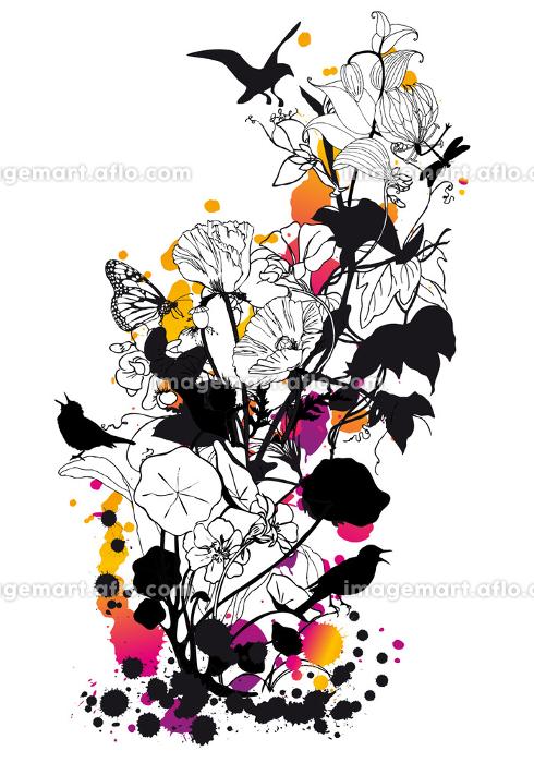 鳥 花 植物の販売画像