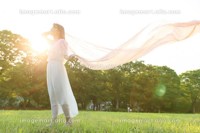 芝生の上の若い日本人女性の販売画像