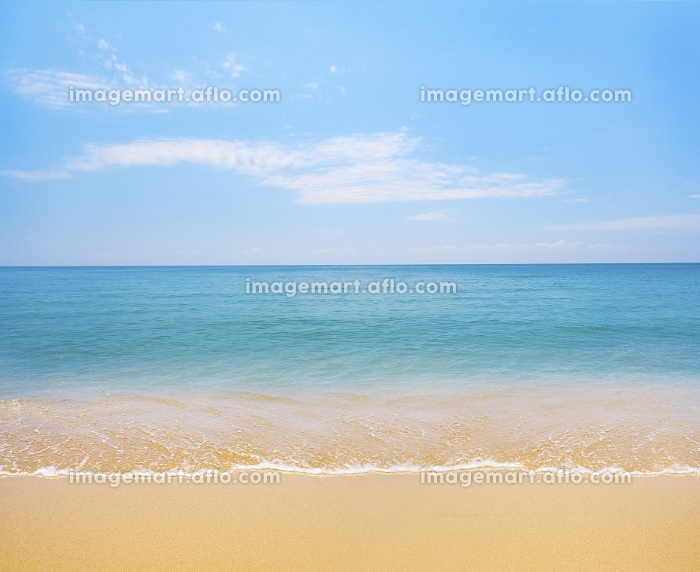beach and tropical seaの販売画像