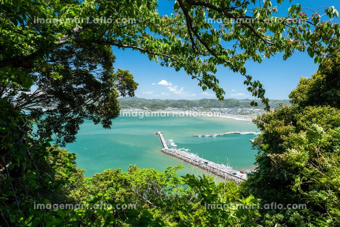 木の間から見える千葉県富浦親港 5月の販売画像