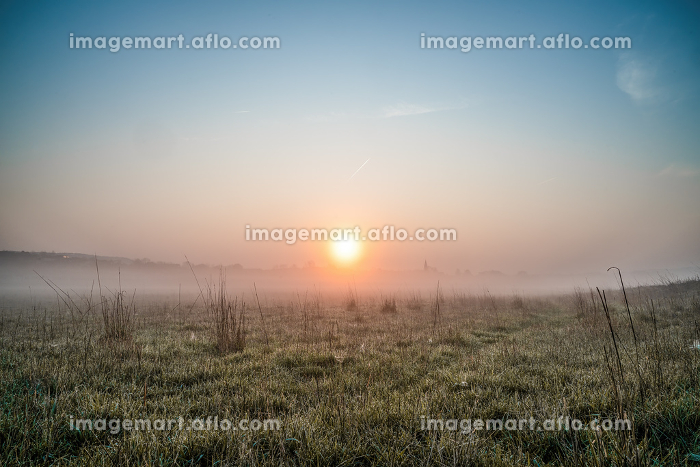 A reddish sunrise on a foggy morning in a field with grasses and dewの販売画像