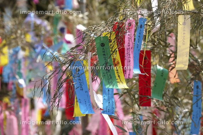 機物神社の七夕祭りの販売画像