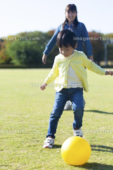 ボール遊びする親子の販売画像