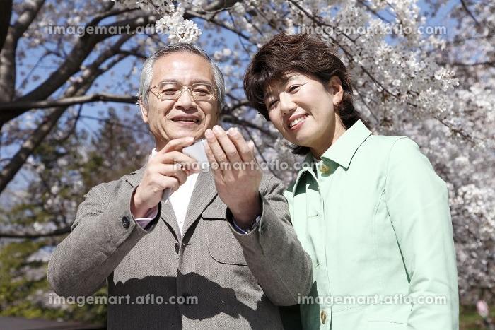 デジタルカメラの画面を見る老夫婦の販売画像