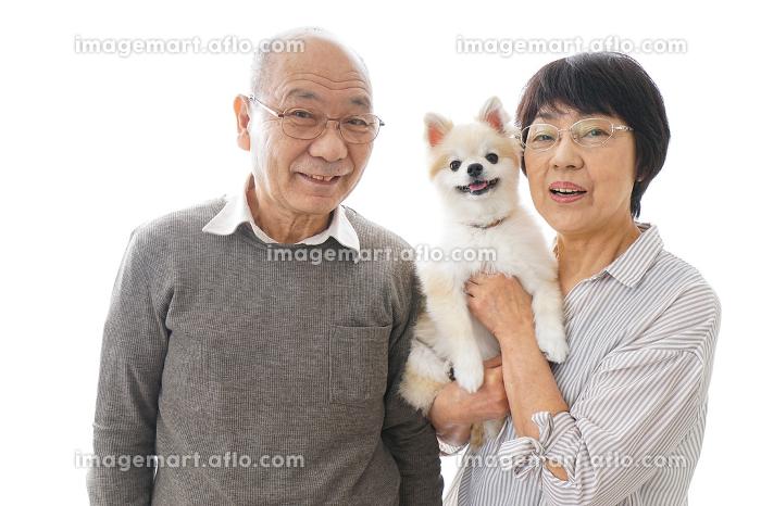 ペットを飼う高齢者夫婦の販売画像