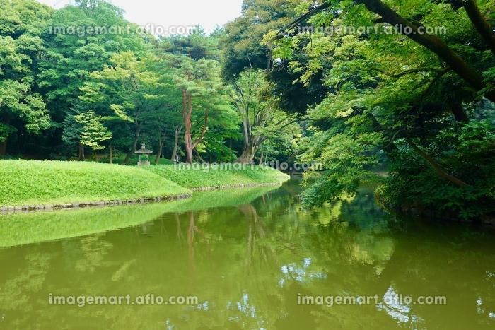 小石川後楽園,KoishikawaKorakuen,小石川,Koishikawa,後楽園,Korakの販売画像