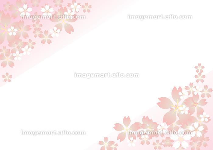 桃色の桜の花びら背景 横の販売画像
