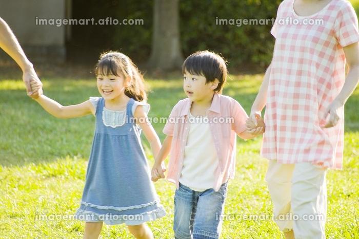 手を繋いで公園を散歩する家族の販売画像