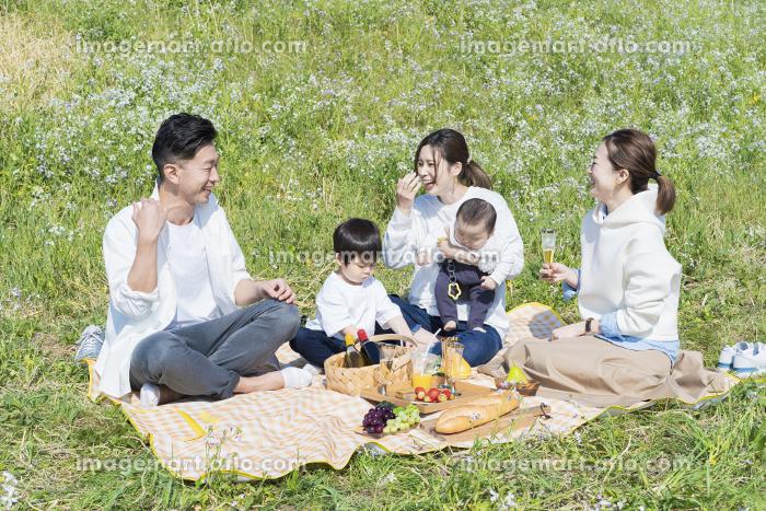 ピクニックを楽しむ人たちの販売画像