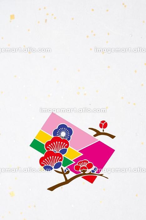 梅の花と色紙の販売画像