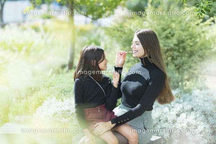 歯磨きをする親子の販売画像