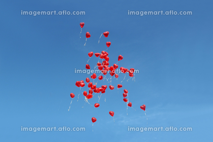 many red balloons in the skyの販売画像
