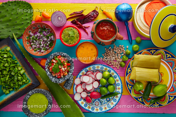 Mexican food mix with sauces nopal and tamale agave guacamoleの販売画像