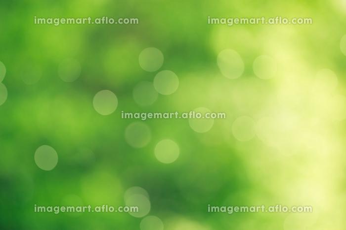 High resolution photo in best qualityの販売画像