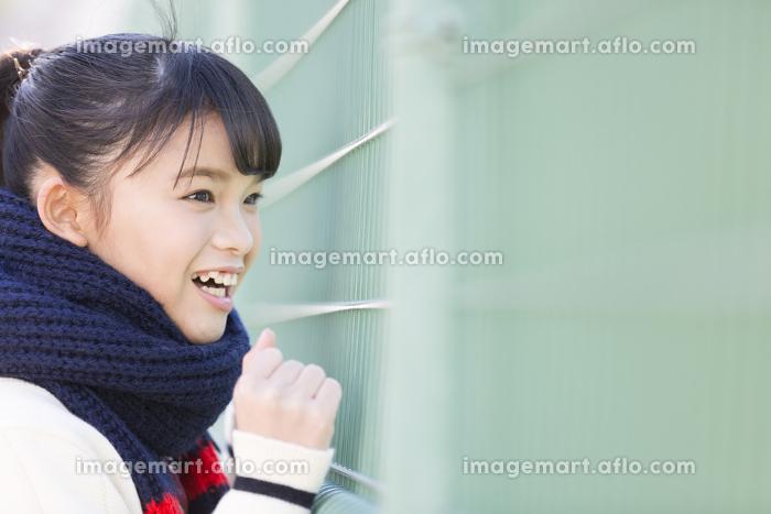 フェンスから眺める女子校生の販売画像