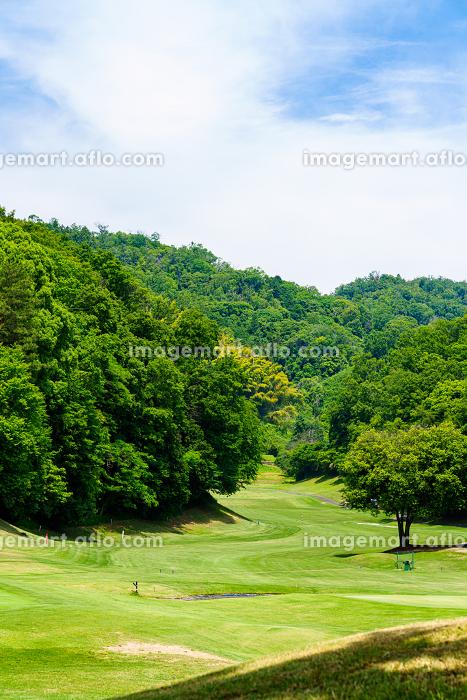 ゴルフ場 グリーン付近の販売画像
