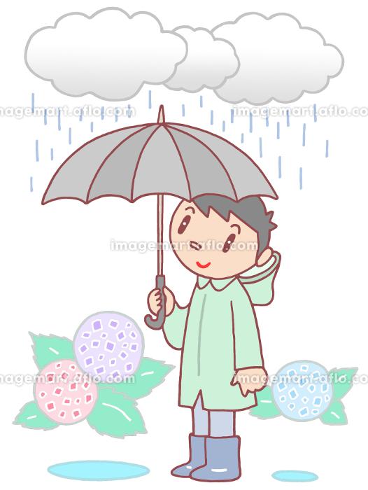 梅雨・雨降りの販売画像