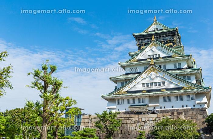 Osaka castle in Japanの販売画像