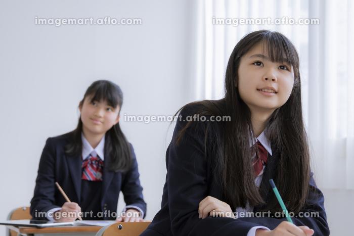 授業を受ける女子学生の販売画像