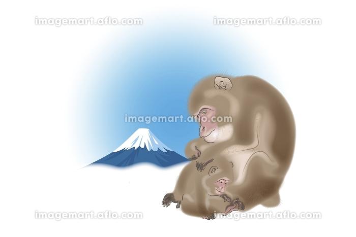 サルの親子と富士山 イラストの販売画像