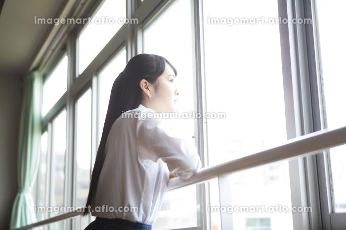 教室から外を眺める女子高生の販売画像