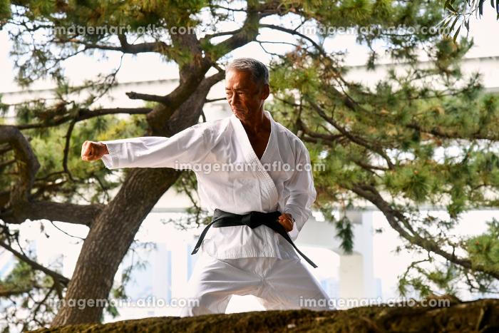 格闘技家 日本人、侍、シニア男性、空手家、武術家、柔道家、極真空手の販売画像