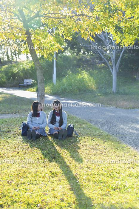 公園で談笑する高校生の販売画像