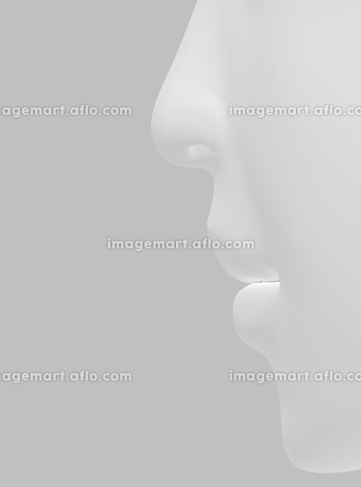リアルな人の鼻・口・顎の販売画像