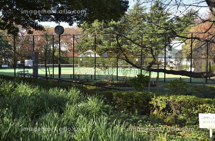 山手公園・テニスコート