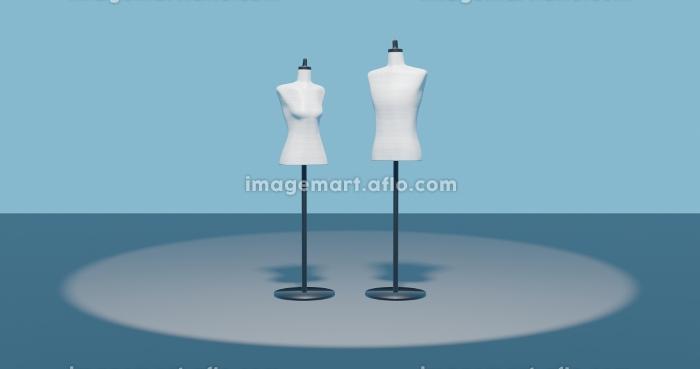 トルソー2体 男性 女性 アパレルファッションディスプレイ 3dcg 青背景の販売画像