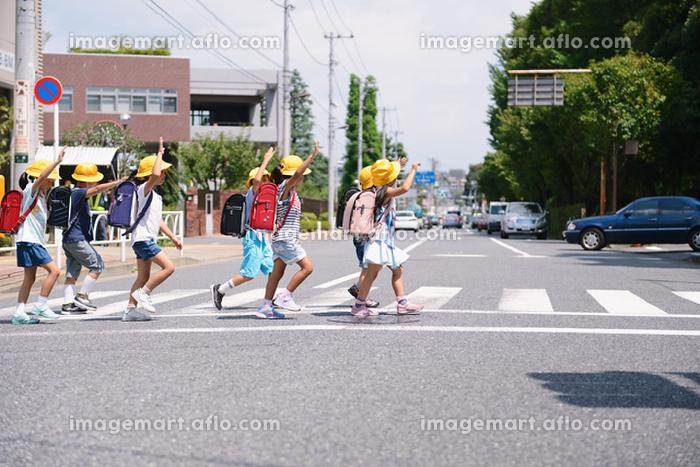 横断歩道を渡る日本人の小学生たちの販売画像