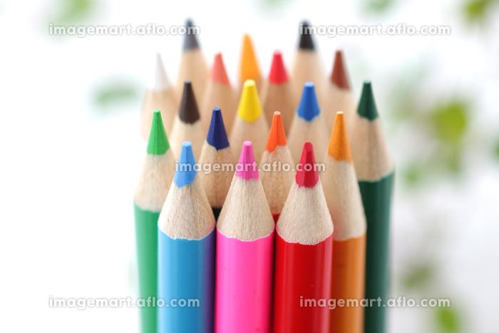 色鉛筆とお絵かきの販売画像