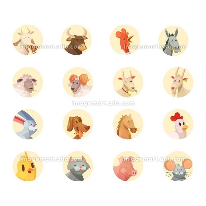 Farm Animals Heads Round Icons Collection . Farm animals cartoon heads round icons collection with horse pig cow bull and rooster isolated vector illustration