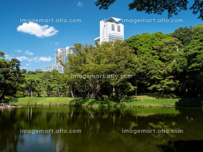 秋の青空と庭園の風景 9月の販売画像