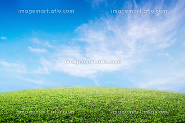 Background image of lush grass field under blue sky and bright.の販売画像