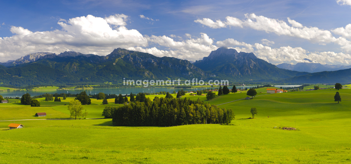 panoramic landscape in bavaria am forggenseeの販売画像