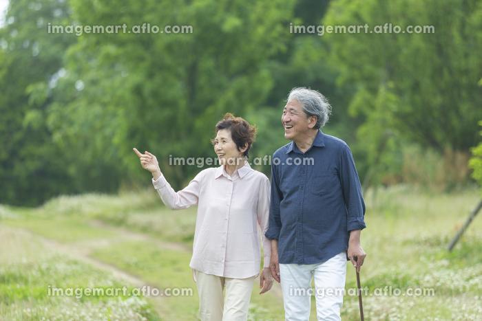 公園を散歩する老夫婦の販売画像