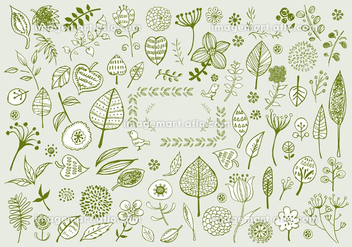 線画 北欧風 イラスト かわいい 手書き 挿絵 ベクター 花 木 葉 植物 緑 リーフ イメージマート