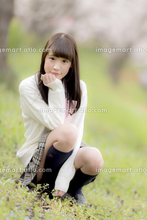 桜の木の下でしゃがみ込む女子高生の販売画像
