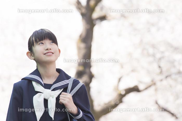通学する女子中学生の販売画像