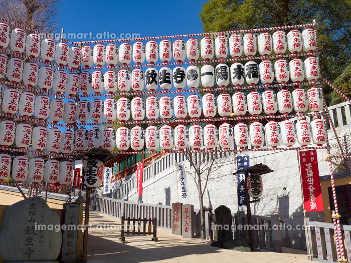 東京都 放生寺の販売画像
