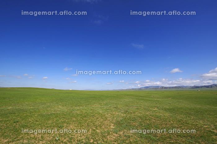 モンゴルの大平原