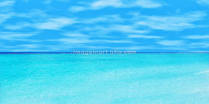アート ロマンチック 浜の販売画像