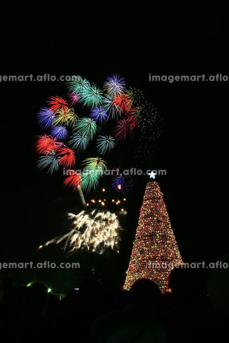 クリスマスイブの花火大会。クリスマスツリーのイルミネーションと打ち上げ花火。クリスマスデート。の販売画像
