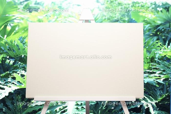 イーゼルと植物合成の販売画像