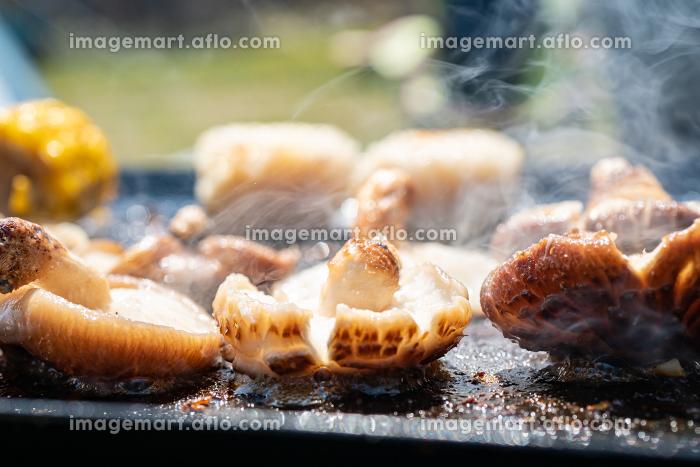 バーベキュー BBQ 野菜焼きの販売画像