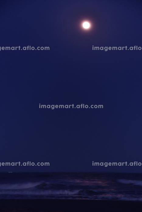 満月に照らされる海の販売画像