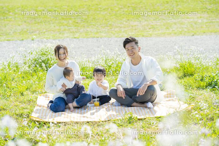 ピクニックで記念写真におさまる家族の販売画像