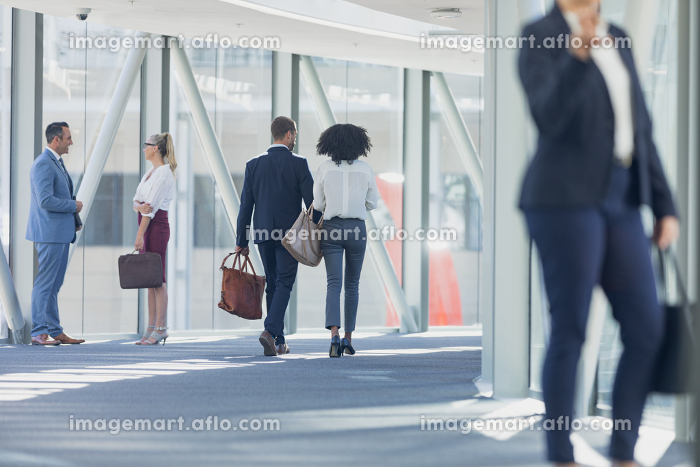 Rear view of diverse business people walking in corridor in modern officeの販売画像